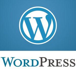 وردپرس - WordPress   بلاگ - Blog